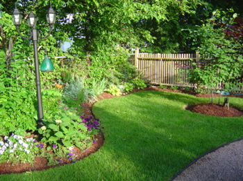 Garden designs for Garden bed designs australia